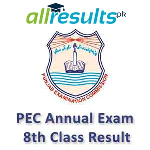 PEC 8th Class Reuslt 2020 of Annual Exams
